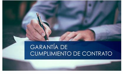 garantia-cumplimiento-contrato-thumbnail-biblioteca.png